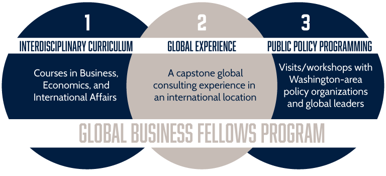 Global Business Fellows: Interdisciplinary Curriculum, Global Experience, Public Policy Programming