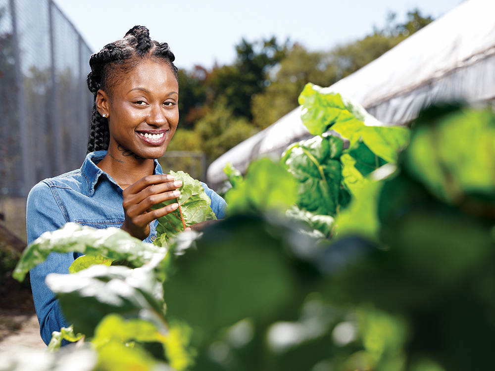 Georgetown Pivot Fellow Kadija Clifton with Swiss chard plants