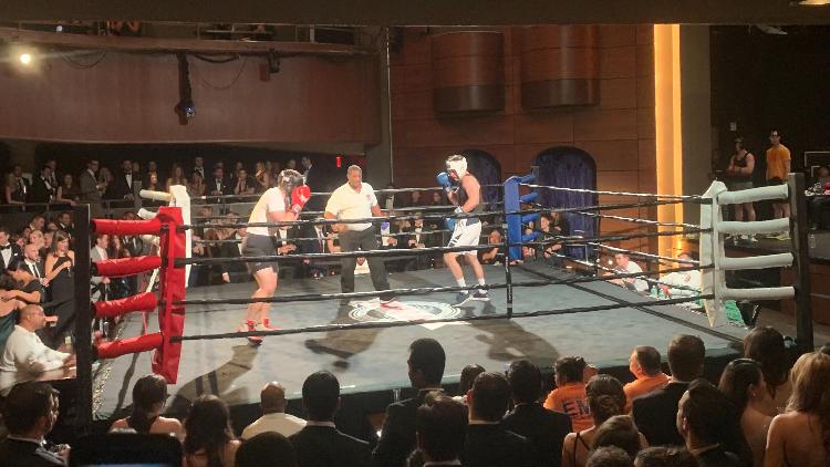 Frank Fight Night boxing.